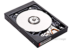IBM Hard drive 25.0GB EIDE 3.5 (DJNA 352500)